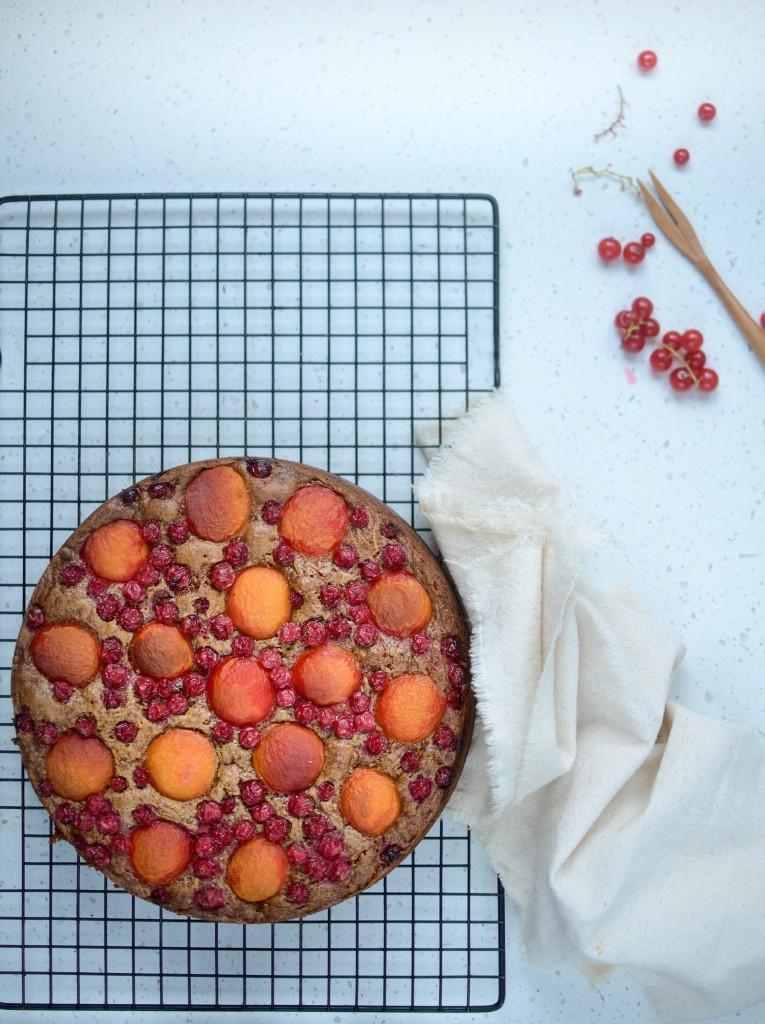 apricot cake (2)